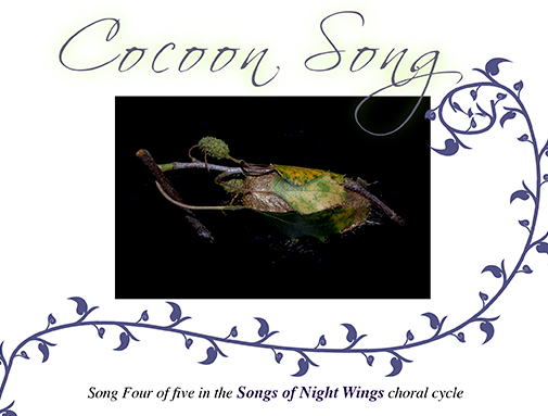 Cocoon Song